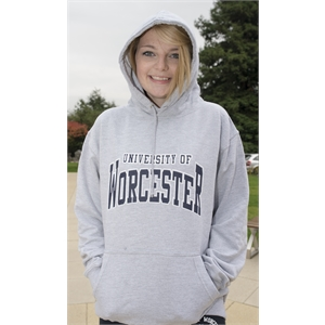 Image for Hoody Grey (XS)